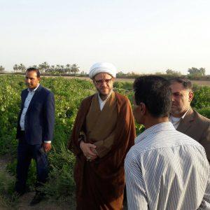 جشنواره های چهارگانه محصولات کشاورزی با حضور امام جمعه کارون برگزار شد