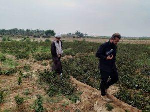 گزارش تصویری/بازدید امام جمعه کارون ازمزرعه چای قرمز در روستای علوه